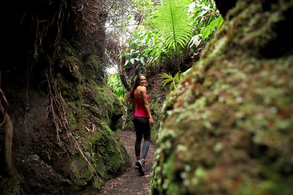 Forest Walk Kalani Tours