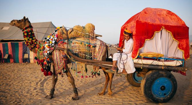 Pushkar - Discover North & South India