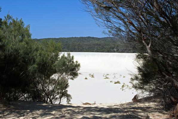 Moreton Island Sand Dunes