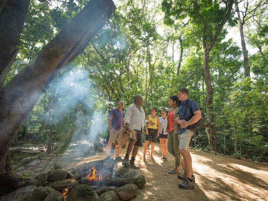 Port Douglas Tour And Mossman Gorge Dreamtime Walk