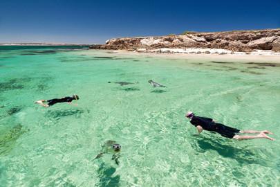 Eyre Peninsula & Flinders Ranges 6 Day 5 Night Tour
