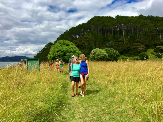 Roberton Island Walks