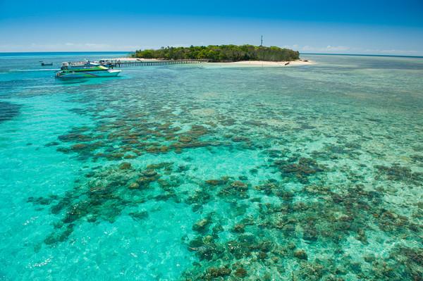 Green Island Reef Cruises Snorkelling Discounts