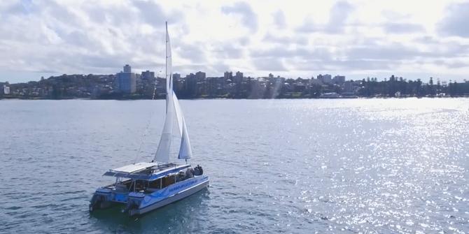 Sydney Harbour Beach Party cheap