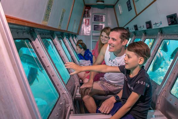 Big Cat Green Island Cruise Full Day Discount