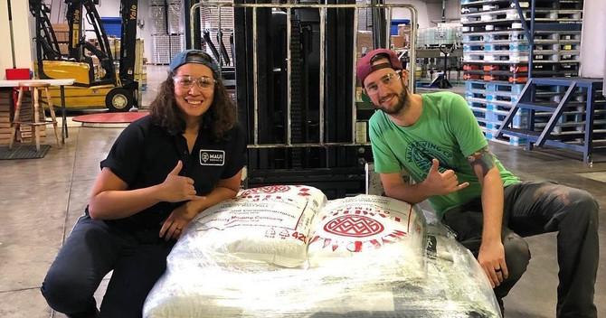 kona cloud forest, coffee, and brewery tour