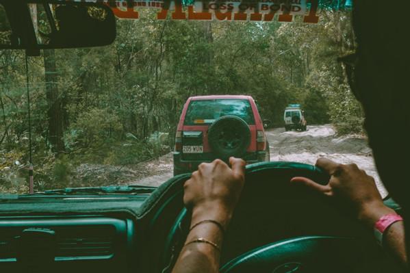 fraser island rainforest tour