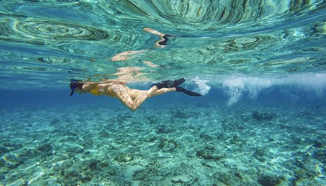 snorkel tour bali indonesia