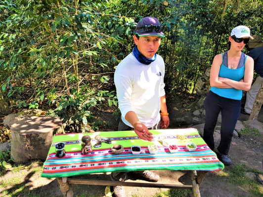 4-Day Salkantay Trek to Machu Picchu 2