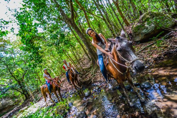 horse-back-riding-jungle