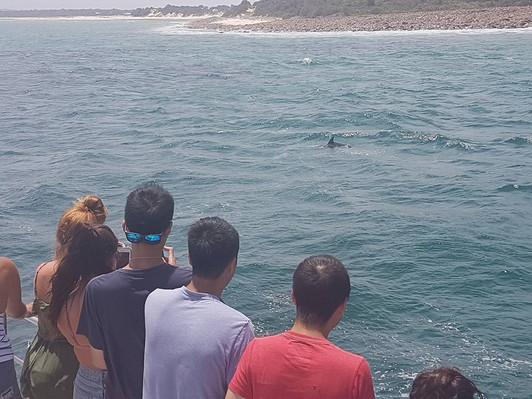 Port Stephens beach tour