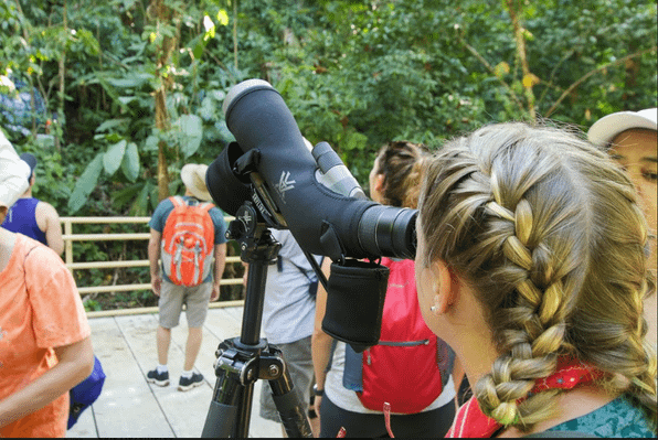 bird-watching-manuel-antonio