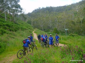 Mount Lofty Bike Tour