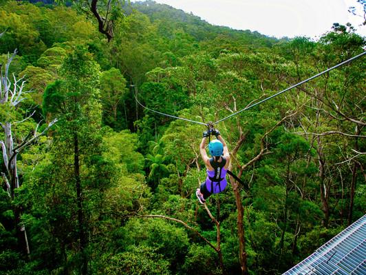 Canyon Flyer Mount Tambourine