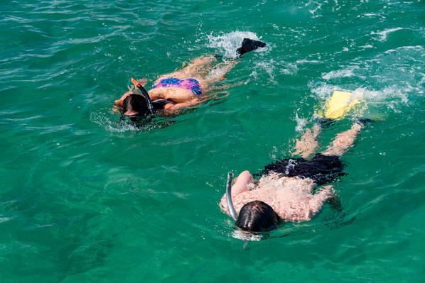 Bay of Islands Cruise deals