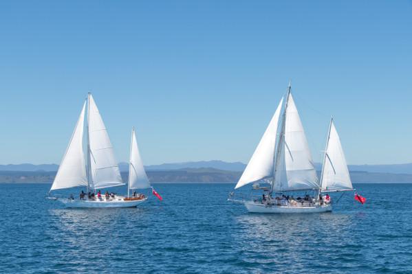 Sail Barbary discounts