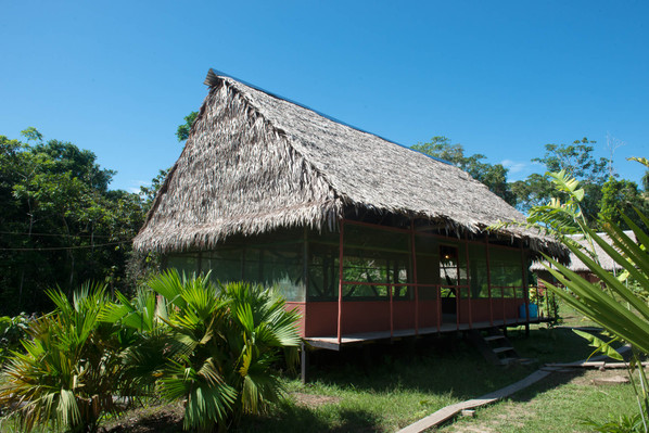 tucan expedition   7 day maniti expeditions iquitos tour 5