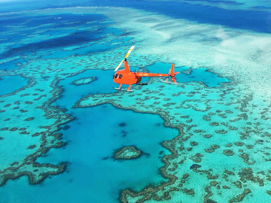 reef and whitehaven beach tour