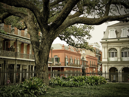 New Orleans Go All Inclusive Pass Deals