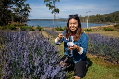 Visit Port Arthur And A Lavender Farm