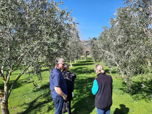 Martinborough food and wine tour deal