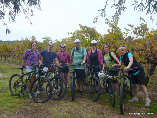 Hills, Vines and Wines by mountain bike adventure deals