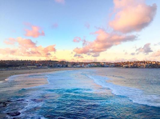Bondi beach Sydney transport