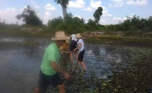 countryside cambodia fishing