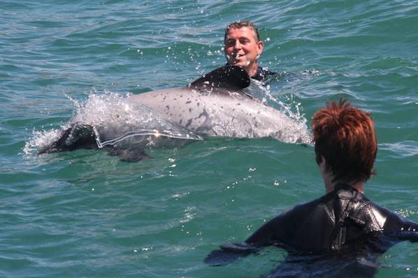 deal on akaroa dolphin cruises .JPG