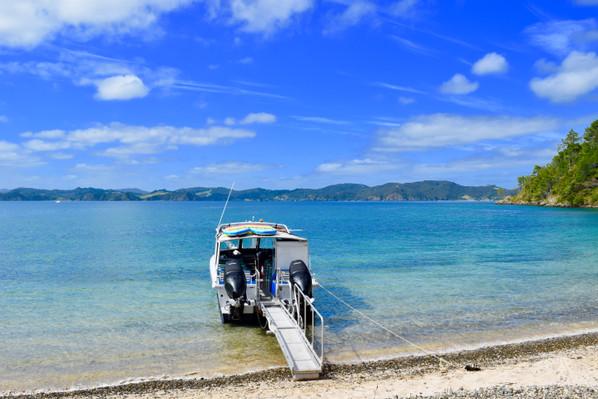 best bay of islands cruise