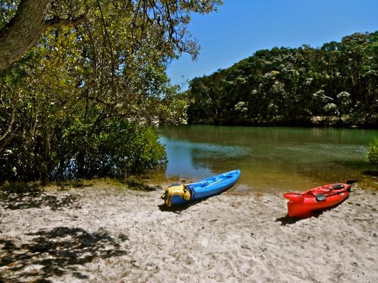 brunswick river kayaking discount