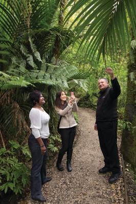 best tour aranui cave waitomo