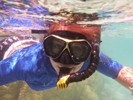 bay of islands snorkel