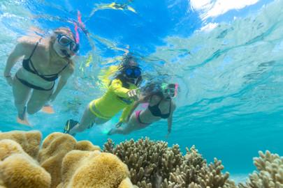 Ocean Safari & Ocean Rafting Two Trips Deal