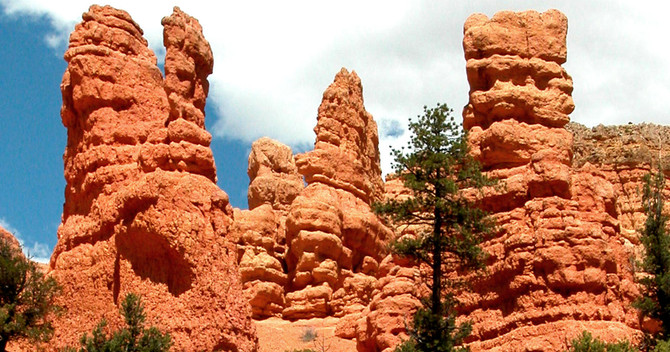 Bryce Canyon & Zion Day Tour From Las Vegas  Deals