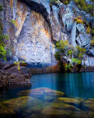 Maori Rock Carvings Tour