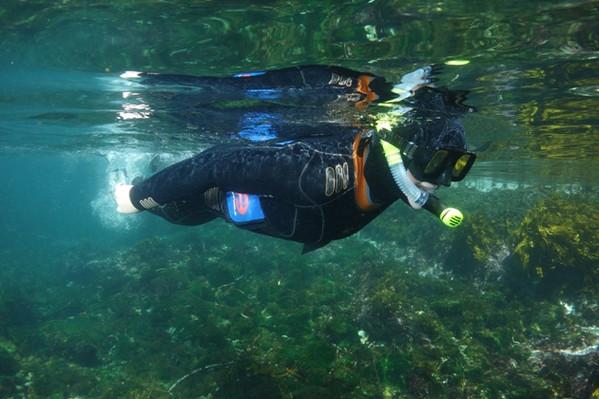 Discover Scuba Divin Day Trip