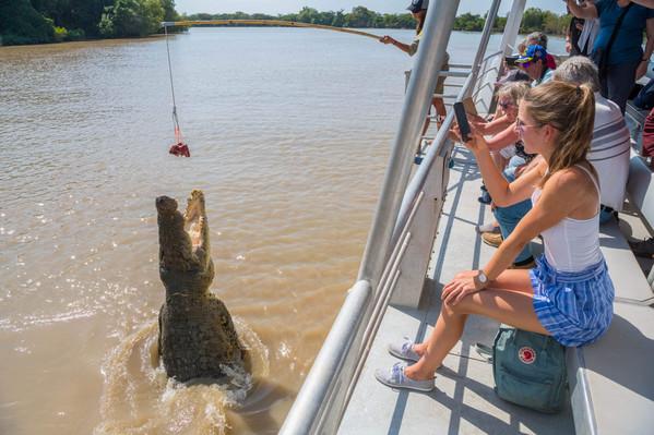 Spectacular Jumping Crocodile Cruise - copyright 1.jpg