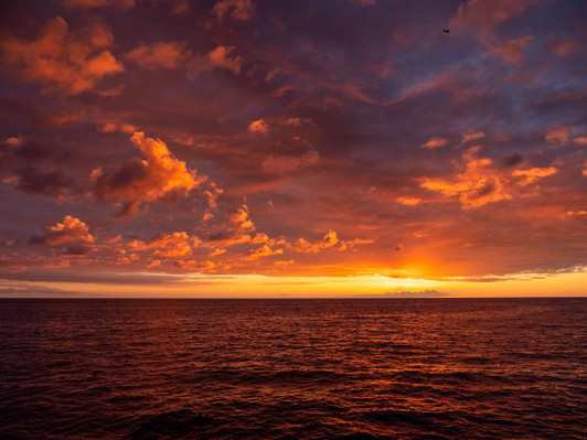 Kona 2 Hour Sunset Cruise