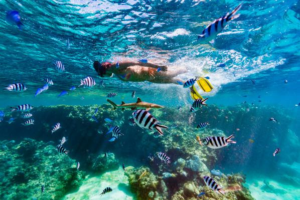Fiji snorkeling tour discount