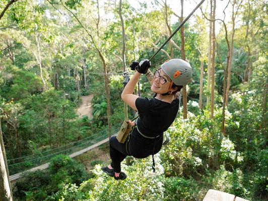 Mount Tambourine Tree Top Zipline