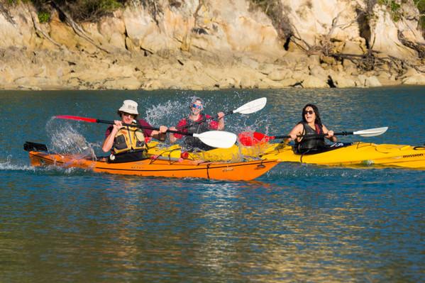 Abel Tasman Kayaking Southern Blend