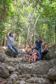 Full Day Or Half Day Daintree Rainforest Walkabout