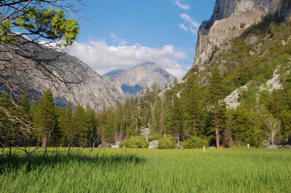 Yosemite National Park Tour specials