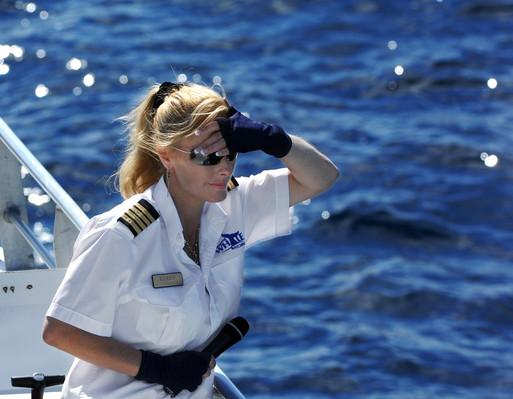 Brisbane Whale Watching Cruise deals