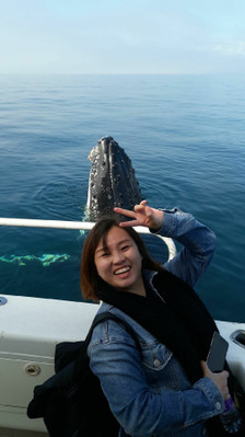 Busselton whale watching cruise