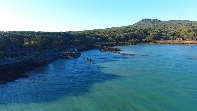 rangitoto island kayak discounts