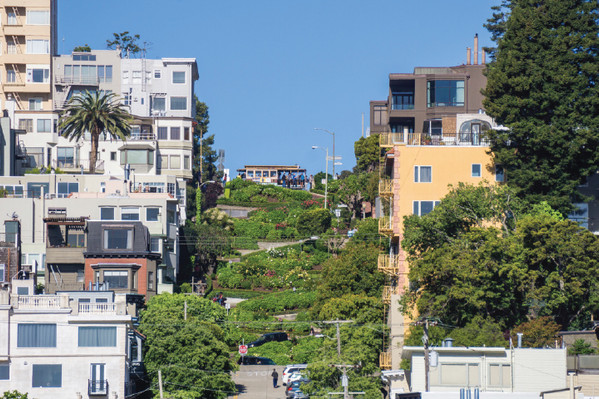 San Francisco Hop-on Hop-off Bus Pass