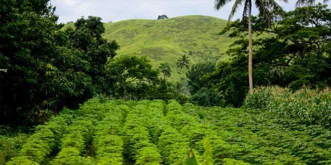 Fiji coastal tour voucher