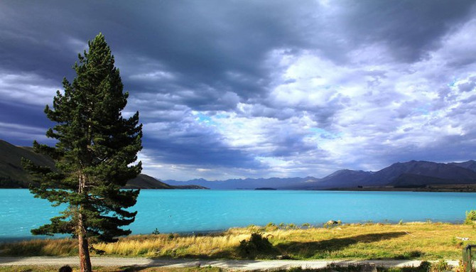 South Island 7 day tour discounts